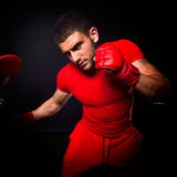 Personal trainer man coach and man exercising boxing Stock Images
