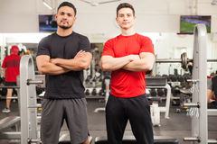 Personal trainers ready to help at the gym. Portrait of two men working as personal trainers in a gym and ready to help Royalty Free Stock Photo