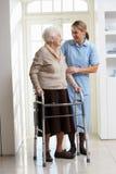 Personale che dispensa le cure che aiuta donna maggiore anziana che usando F ambulante Immagine Stock