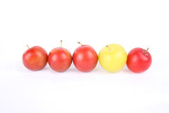 Personality. Five plum fruit with white background, a different color royalty free stock images