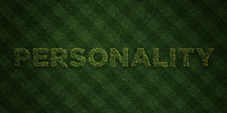 PERSONALITY - fresh Grass letters with flowers and dandelions - 3D rendered royalty free stock image Stock Photo
