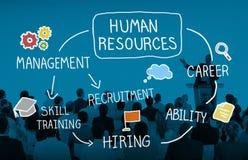 Personalresurs som hyr valt karriärbegrepp för rekryterare royaltyfria bilder