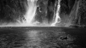 The Personalty of a Waterfall. Up close view of Stirling Falls to capture the power and the personality of the waterfall at Milford Sound, Fiordland National Stock Images