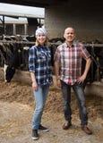 Personas cualificadas que toman el cuidado de vacas en granero de vacas de lin Fotos de archivo libres de regalías