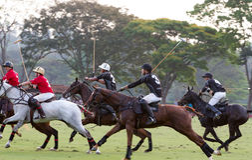 Personas del polo en jugar del Brasil foto de archivo
