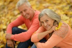 Personas mayores felices Fotografía de archivo libre de regalías