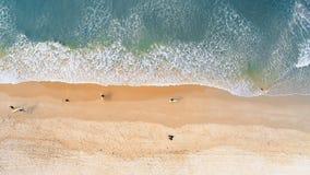 Personas que practica surf que caminan en la playa 4k