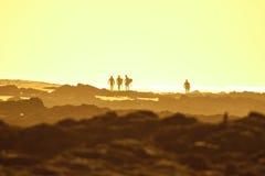 Personas que practica surf de la puesta del sol Imágenes de archivo libres de regalías