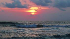Personas que practica surf de la tarde en el océano almacen de metraje de vídeo