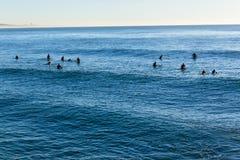 Personas que practica surf de Longboards que practican surf que esperan ondas Fotos de archivo