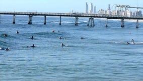 Personas que practica surf en el horizonte Gold Coast Australia del paraíso de las personas que practica surf almacen de video