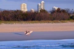 Personas que practica surf en el paraíso Queensland Australia de las personas que practica surf Fotos de archivo libres de regalías