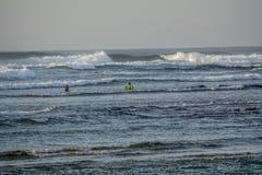 Personas que practica surf en Fuerteventura foto de archivo libre de regalías