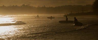 Personas que practica surf en la playa del océano en la puesta del sol Fotos de archivo