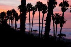 Personas que practica surf en la salida del sol Imagen de archivo libre de regalías