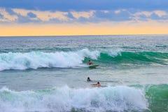 Personas que practica surf en las tablas hawaianas en las ondas foto de archivo