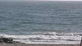 Personas que practica surf en ondas de cogida de la playa por el embarcadero de la roca almacen de metraje de vídeo