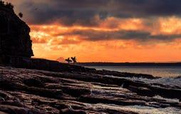 Personas que practica surf en orilla en tiempo de la puesta del sol foto de archivo libre de regalías