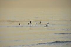 Personas que practica surf en puesta del sol Imágenes de archivo libres de regalías
