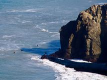 Personas que practica surf en San Francisco Bay Imagen de archivo libre de regalías