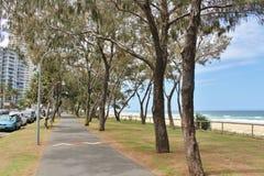 Personas que practica surf paraíso, Australia Fotografía de archivo libre de regalías