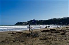 Personas que practica surf que esperan para domesticar las ondas Fotografía de archivo libre de regalías