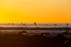 Personas que practica surf que esperan una onda Fotos de archivo