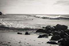 Personas que practica surf que toman la onda de fractura en Océano Atlántico escénico en blanco y negro, capbreton, Francia Fotografía de archivo libre de regalías