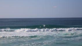 Personas que practica surf y ondas metrajes