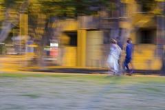 Persone appena sposate che camminano nel parco alla notte con il fotografo fotografia stock libera da diritti