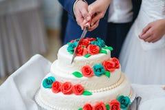 Persone appena sposate che tagliano la torta nunziale Fotografia Stock Libera da Diritti