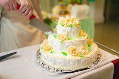 Persone appena sposate che tagliano la torta nunziale Fotografie Stock Libere da Diritti