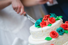 Persone appena sposate che tagliano la torta nunziale Immagine Stock