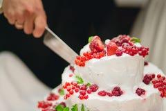 Persone appena sposate che tagliano la torta nunziale Immagini Stock Libere da Diritti