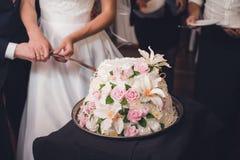 Persone appena sposate che tagliano la torta nunziale Fotografia Stock