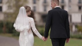 Persone appena sposate felici che camminano nel parco Sposa e sposo eleganti del handome fuori stock footage