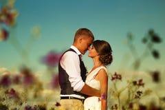 Persone appena sposate in sole di tramonto in un campo contro il cielo ed i fiori porpora Fotografia Stock Libera da Diritti