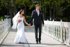 Persone appena sposate su una passeggiata immagini stock libere da diritti