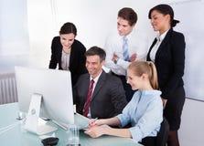 Persone di affari che esaminano computer Immagine Stock