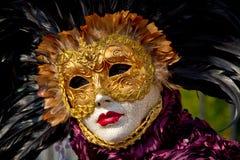 Personen i den Venedig karnevalet maskerar Royaltyfri Fotografi
