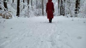 Personen som går långsamt i snö, täckte skogen nära vintersemesterorten, tillbaka sikt stock video