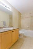 2 personer för mosaik för blå idérik för design för badrum för bad som 3d tom inre spegel för lampa moderna framför hyllor, sink  Royaltyfri Foto