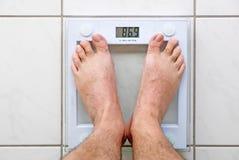 personliga scales Royaltyfri Foto