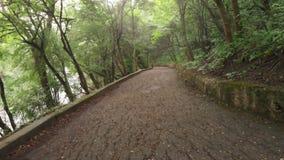 Personligt perspektiv av att gå på en bana i skogen