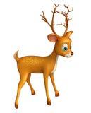 Personnage de dessin animé de cerfs communs d'amusement Photos stock