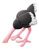 Personnage de dessin animé enterré par tête d'autruche Images stock