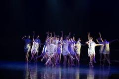 Personnalité et vulgarisation 2--Âne de drame de danse obtenir l'eau images stock