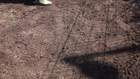 Personne avec des graines d'herbe semant dessus pour mettre à la terre près de la pelouse déjà établie clips vidéos