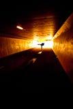 Personne dans le tunnel image libre de droits