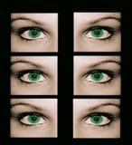 Personne est sûr des yeux étranges Image libre de droits